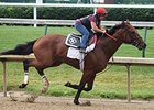 Keen Ice Breezes Nicely; 'Pharoah' Walks