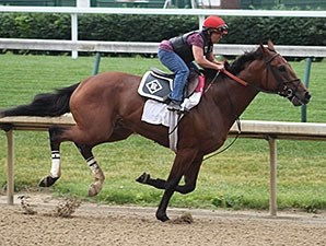 Keen Ice gallops at Churchill Downs May 27.
