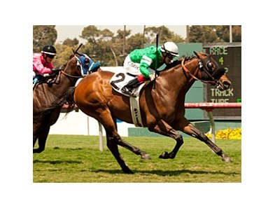 Eswan Flores wins on Kelly Leak at Hollywood Park.