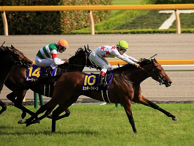 Mikki Queen showed her talent and class with a furious late run to capture the Yushun Himba (Jpn-I, Japanese Oaks) from favorite Rouge Buck at Tokyo Racecourse.