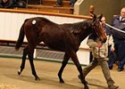 Lot 1012; Sea The Stars filly out of the Rahy mare Ecoutila, brought 450,000 guineas.