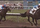 Dare and Go pulls away from Cigar to win the 1996 Pacific Classic.