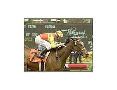 "Nashoba's Key wins the Milady Breeders' Cup Handicap, Sunday at Hollywood Park.<br><a target=""blank"" href=""http://www.bloodhorse.com/horse-racing/photo-store?ref=http%3A%2F%2Fpictopia.com%2Fperl%2Fgal%3Fprovider_id%3D368%26ptp_photo_id%3D1335742%26ref%3Dstory"">Order This Photo</a>"