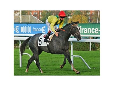 "Morandi streaks home in the Criterium de Saint-Cloud.<br><a target=""blank"" href=""http://photos.bloodhorse.com/AtTheRaces-1/at-the-races-2012/22274956_jFd5jM#!i=2206557555&k=KcQwXJq"">Order This Photo</a>"