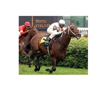 "Gaff flies home in the Aegon Turf Sprint.<br><a target=""blank"" href=""http://www.bloodhorse.com/horse-racing/photo-store?ref=http%3A%2F%2Fpictopia.com%2Fperl%2Fgal%3Fprovider_id%3D368%26ptp_photo_id%3D1125874%26ref%3Dstory"">Order This Photo</a>"