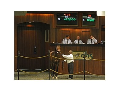 Hip 126 sold for $425,000 at the OBS March sale.