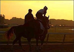 Friday Morning Report: Belmont Contenders on the Track Under Cloudless Skies