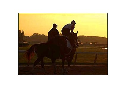 Belmont Stakes favorite Funny Cide, right, on the track Friday morning.