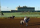 Lone Star Park saw a slight decline in overall wagering during the 2008 meet.