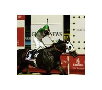 Proud Tower Too, with David Cohen up,  wins the Dubai Golden Shaheen.
