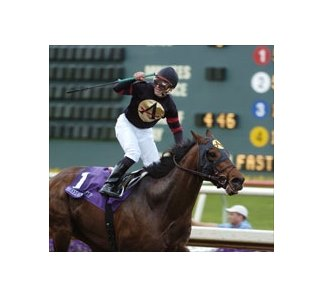 2004 Horse of the Year Ghostzapper