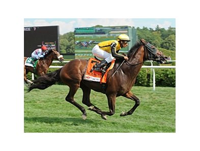 "Sanagas won the 1 5/8 mile John's Call at Saratoga on August 5.<br><a target=""blank"" href=""http://www.bloodhorse.com/horse-racing/photo-store?ref=http%3A%2F%2Fpictopia.com%2Fperl%2Fgal%3Fprovider_id%3D368%26ptp_photo_id%3D9660163%26ref%3Dstory"">Order This Photo</a>"