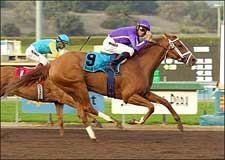 Rags to Riches Writes Las Virgenes Success Story