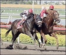 Corinthian Gets Grade in Gulfstream Park Handicap