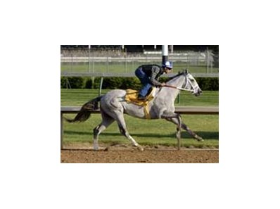 "Storm in May has the first post position pick.<br><a target=""blank"" href=""http://www.bloodhorse.com/horse-racing/photo-store?ref=http%3A%2F%2Fpictopia.com%2Fperl%2Fgal%3Fgallery_id%3D14779%26sequencenum%3D0%26provider_id%3D368%26process%3Dgallery%26page%3Dthumbnails"">Derby Works Photos</a>"