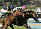 Noble Court (right) runs by Law Breaker on the way to a determined San Vicente win, Sunday at Santa Anita.