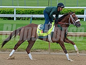 Mr. Z at Churchill Downs for the Kentucky Derby.