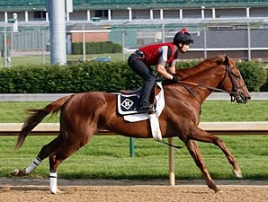 Dullahan Turns in Swift 5F Drill at Churchill