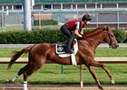 Dullahan worked 5 furlongs in 1:00 1/5 at Churchill Downs May 19.