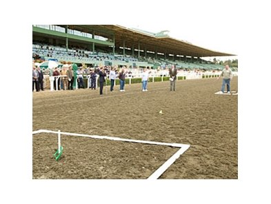 John Placzankis threw a perfect ringer and won first prize of $1 million in Santa Anita's annual St. Patrick's Day Horseshoe Pitch contest.