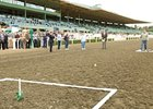 Perfect Pitch Earns $1M at Santa Anita