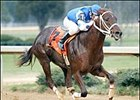 Smarty Jones and jockey Stewart Elliott (7) win the Southwest Stakes, Saturday at Oaklawn Park.
