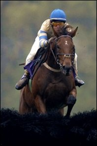 McDynamo seeks a repeat of this victory in the 2005 Breeders' Cup Steeplechase.