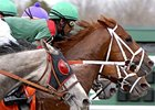 Retired Trainer Maurice Zilber Dead