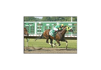 Gators N Bears wins the Jersey Shore Breeders' Cup at Monmouth Park.