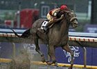 "Corinthian leaves the rest behind in the Breeders' Cup Dirt Mile.<br><a target=""blank"" href=""http://www.bloodhorse.com/horse-racing/photo-store?ref=http%3A%2F%2Fpictopia.com%2Fperl%2Fgal%3Fprovider_id%3D368%26ptp_photo_id%3D2621221%26ref%3Dstory"">Order This Photo</a>"