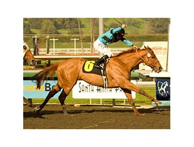 Return of the King, the last horse owned by James Ortega, scored a dramatic come-from-behind victory at Santa Anita Jan. 8.
