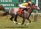 Soldier's Dancer was one of jockey Daniel Centeno's meet-leading 144 winners at Tampa Bay Downs winter/spring meet, which ended May 4.
