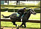Grand Slam filly worked the fastest quarter-mile during Monday's sale preview at Keeneland.