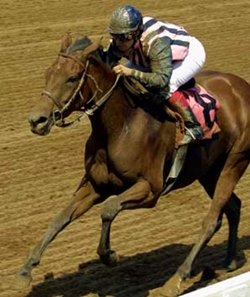 Jessica Oldham Stith made her riding debut aboard Greenwood Lady at River Downs on June 17.