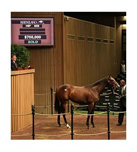 Hip 658; filly, Malibu Moon - Erhu by Tactical Cat, brought $700,000 on day 4 of the Keeneland September yearling sale.