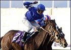Breeders' Cup Turf winner Fantastic Light received the Cartier Award for Europe's Horse of the Year.