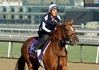 "Zagora<br><a target=""blank"" href=""http://photos.bloodhorse.com/BreedersCup/2012-Breeders-Cup/Works/26130247_gxH6nS#!i=2187190686&k=DxqSdZr"">Order This Photo</a>"