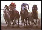 Calkins Road, second from right, drives to front in the California Cup Classic.