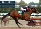 "Sugar Shake glides to an easy victory in the Turnback the Alarm.<br><a target=""blank"" href=""http://www.bloodhorse.com/horse-racing/photo-store?ref=http%3A%2F%2Fpictopia.com%2Fperl%2Fgal%3Fprovider_id%3D368%26ptp_photo_id%3D2692735%26ref%3Dstory"">Order This Photo</a>"