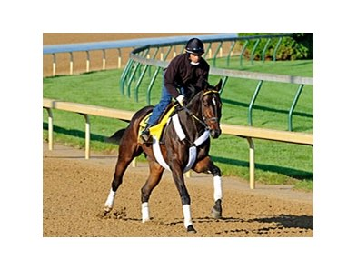 Watch Me Go was born on January 23, 2008, making him the oldest entrant in the 2011 Kentucky Derby.