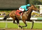 Brother Derek and jockey Alex Solis win the Santa Catalina, Saturday at Santa Anita.