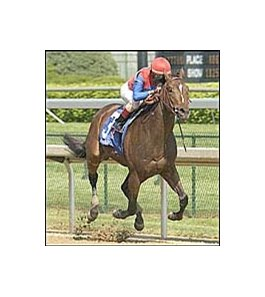 Midas Eyes wins the Derby Trial, Saturday at Churchill.