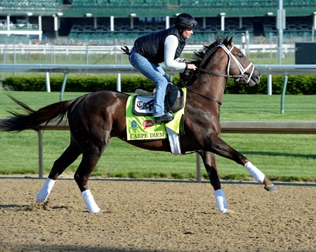 Carpe Diem on the track at Churchill Downs on April 28, 2015, in Louisville, KY, in preparation for the Kentucky Derby.
