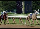 Riderless Gander crossed the finish line first in the Saratoga Breeders' Cup.