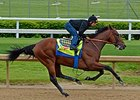"American Pharoah worked 5 furlongs in :58 2/5 under jockey Martin Garcia on April 26.<br><a target=""blank"" href=""http://photos.bloodhorse.com/TripleCrown/2015-Triple-Crown/Kentucky-Derby-Workouts/i-CrBH6bf"">Order This Photo</a>"