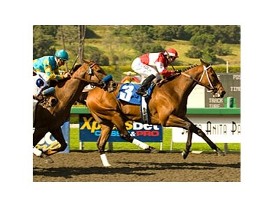 Soul City Slew comes home strong in the Potrero Grande.