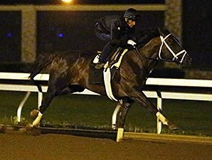 Carpe Diem works towards the Kentucky Derby April 25.