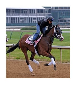 "Ailalea faces 7 in the Dogwood Stakes.<br><a target=""blank"" href=""http://www.bloodhorse.com/horse-racing/photo-store?ref=http%3A%2F%2Fpictopia.com%2Fperl%2Fgal%3Fprovider_id%3D368%26ptp_photo_id%3D8923652%26ref%3Dstory"">Order This Photo</a>"