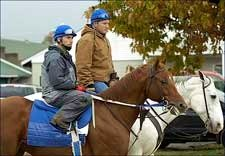 Breeders' Cup Entrant Super Frolic to Blasi Barn
