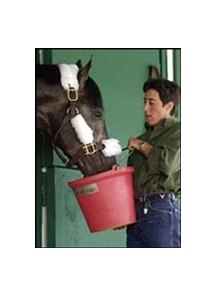 Assistant trainer Yvonne Azeff holds up a pail for Kentucky Derby winner Monarchos in Stall 40, the traditional home of the Kentucky Derby winner at Pimlico Race Course.